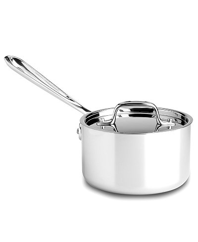 All-Clad Stainless Steel 1.5qt. Covered Saucepan